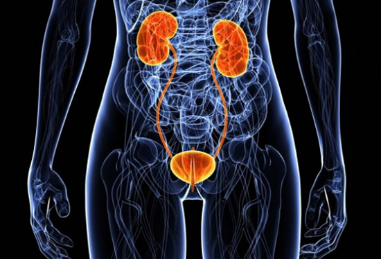Мочевой пузырь сахарный диабет у женщин