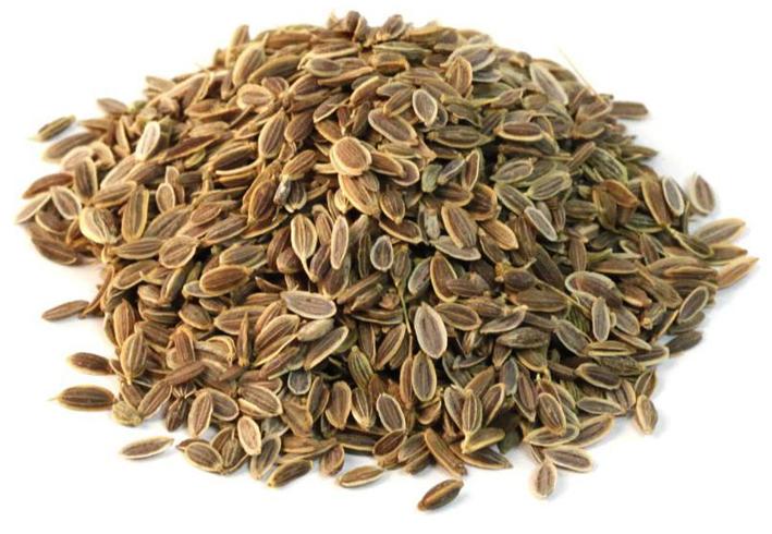 Укропные семена