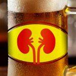 Как пиво влияет на почки и можно ли его пить?