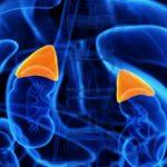 Альдостерон: что это, симптомы и причины повышения