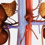 Надпочечниковая недостаточность: причины, симптомы и лечение